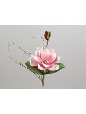 Magnolienzweig rosa-weiss