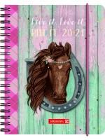 Brunnen Schülerkalender 2020/2021 Ponylove A6 PP-Einband  18 Monate