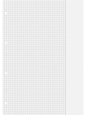 Brunnen Ringbucheinlagen A4 kariert mit Rand, Lin. 26 100 Blatt